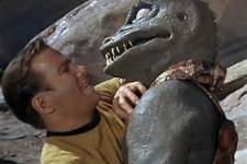 hand to hand combat the gorn